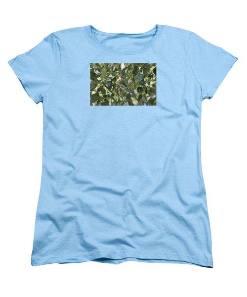 Flight Of The Hummingbird Women's T-Shirt (Standard Cut) by Debra     Vatalaro
