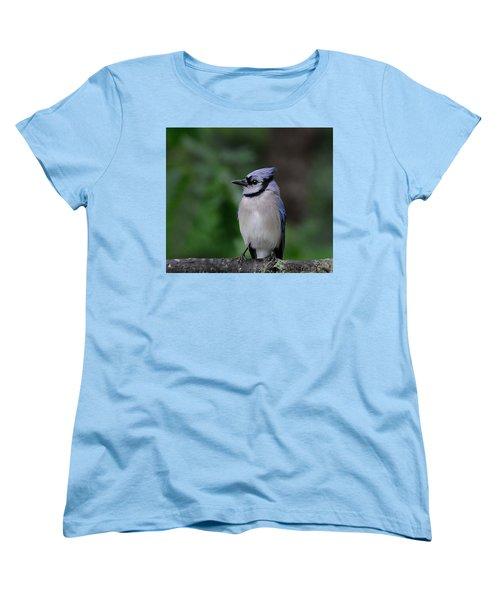 Blue Jay Women's T-Shirt (Standard Cut) by Diane Giurco