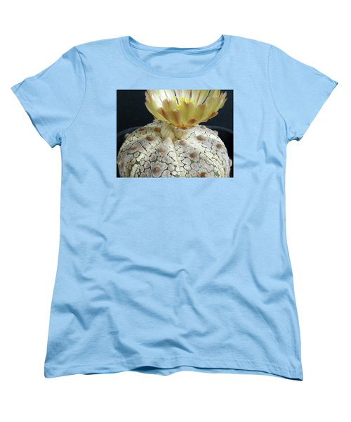 Cactus Flower 1 Women's T-Shirt (Standard Cut) by Selena Boron