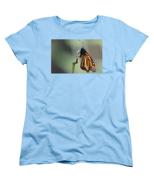 Monarch Butterfly Stony Brook New York Women's T-Shirt (Standard Cut) by Bob Savage