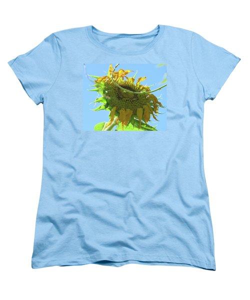Sunshine In The Garden 32 Women's T-Shirt (Standard Cut) by Brooks Garten Hauschild