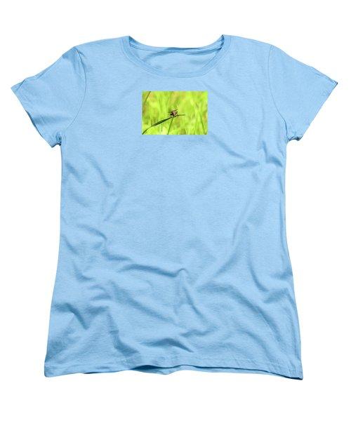 The Fly Women's T-Shirt (Standard Cut) by David Stasiak