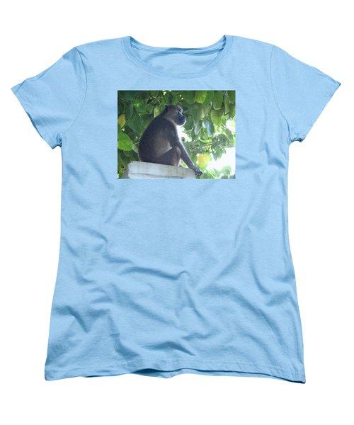 Baboon Sits Guard  Women's T-Shirt (Standard Fit)