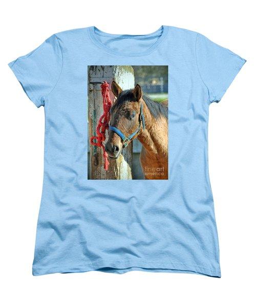 Horse Women's T-Shirt (Standard Cut) by Savannah Gibbs