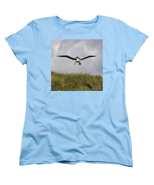 Black-browed Albatross Women's T-Shirt (Standard Cut) by Jean-Louis Klein & Marie-Luce Hubert