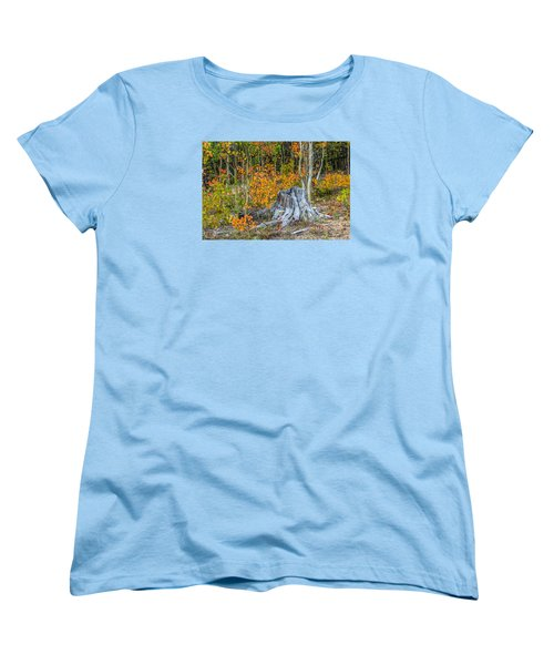 A Forest Of Color Women's T-Shirt (Standard Cut) by Stephen  Johnson