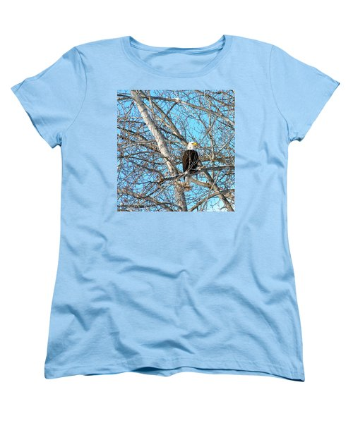 Women's T-Shirt (Standard Cut) featuring the photograph A Majestic Bald Eagle by Will Borden