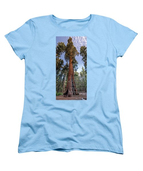 A Poem Lovely As A Tree.   Women's T-Shirt (Standard Cut) by Phil Abrams