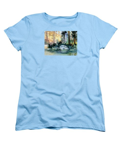Women's T-Shirt (Standard Cut) featuring the painting Admiralty Island by Teresa Ascone