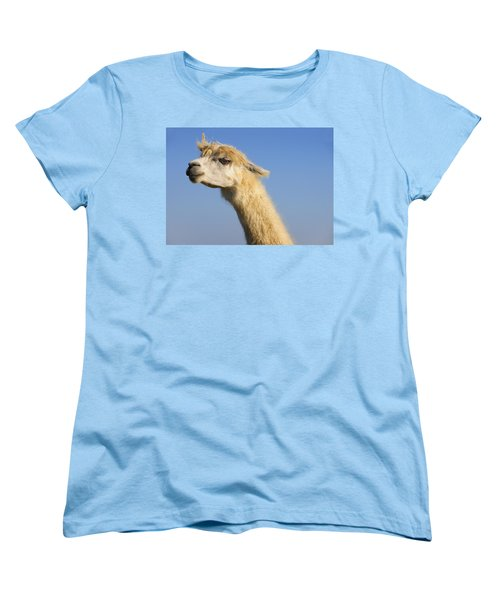 Women's T-Shirt (Standard Cut) featuring the photograph Alpaca by Skip Hunt