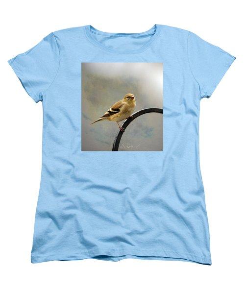 American Goldfinch Women's T-Shirt (Standard Cut) by Diane Giurco