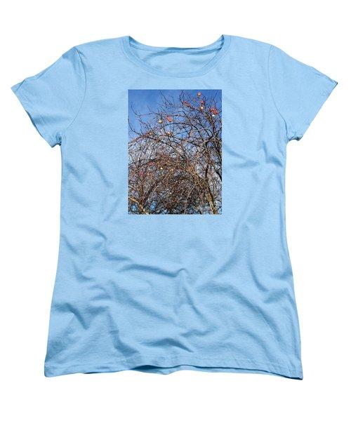 Apples In December Women's T-Shirt (Standard Cut) by Patricia E Sundik