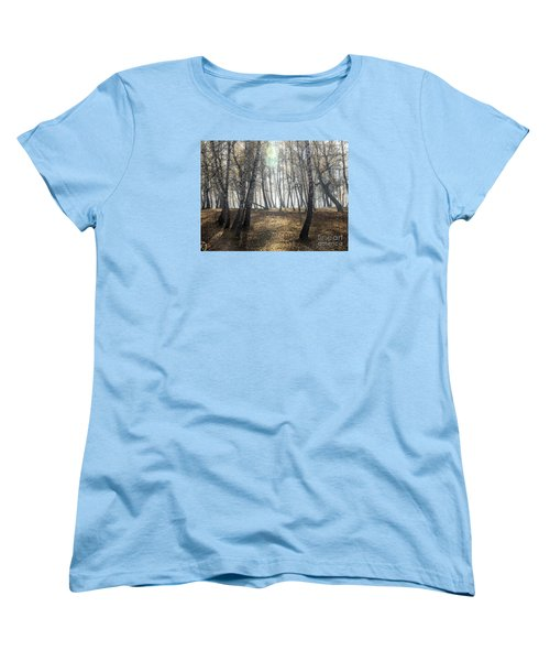 Autumn Deep Fog In The Morning Birch Grove Women's T-Shirt (Standard Cut) by Odon Czintos