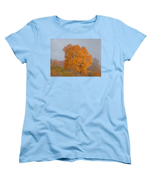 Autumn Tree Women's T-Shirt (Standard Cut) by Donald C Morgan