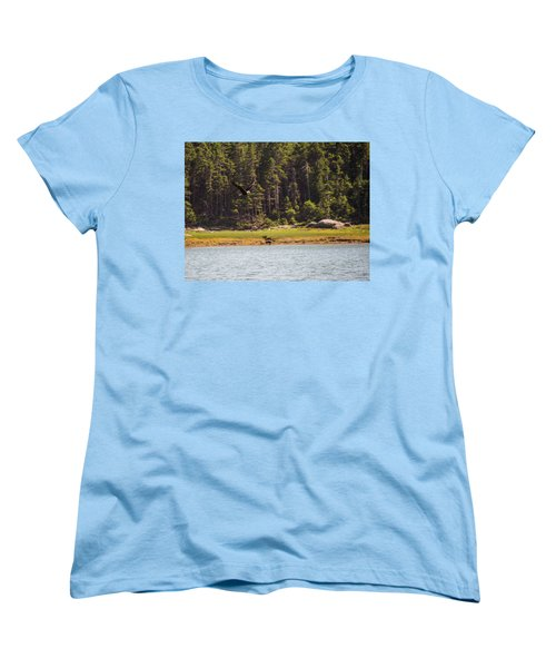 Bald Eagle In Flight Women's T-Shirt (Standard Cut) by Trace Kittrell