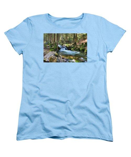 Bavarian Stream Women's T-Shirt (Standard Cut) by Sean Allen