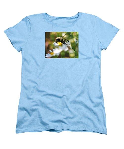 Bee On Aster Women's T-Shirt (Standard Cut)