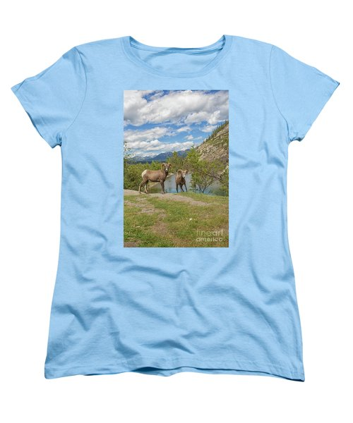 Bighorn Sheep In The Rocky Mountains Women's T-Shirt (Standard Cut) by Patricia Hofmeester