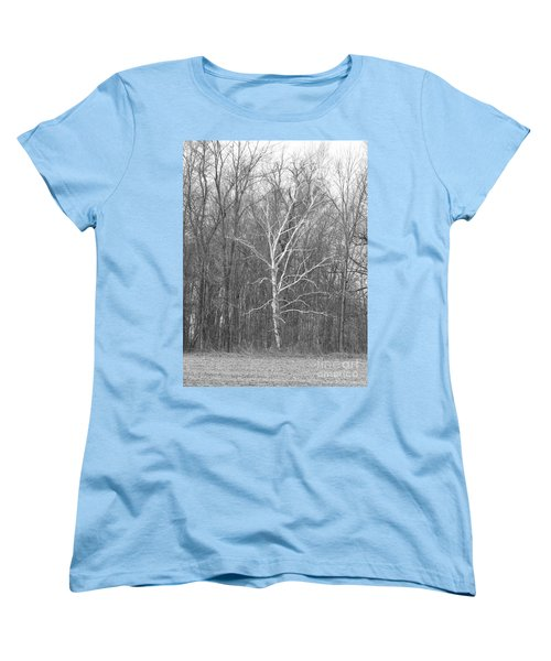 Birch In Bw Women's T-Shirt (Standard Cut) by Erick Schmidt