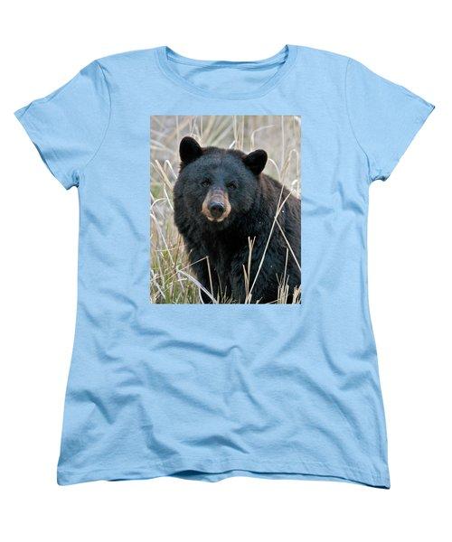 Black Bear Closeup Women's T-Shirt (Standard Fit)