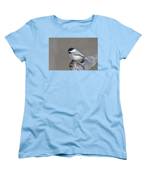 Women's T-Shirt (Standard Cut) featuring the photograph Black Capped Chickadee 1128 by Michael Peychich