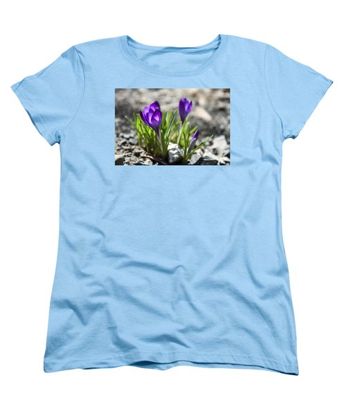 Blooming Crocus #1 Women's T-Shirt (Standard Cut) by Jeff Severson
