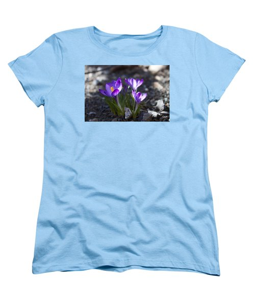 Blooming Crocus #3 Women's T-Shirt (Standard Cut) by Jeff Severson