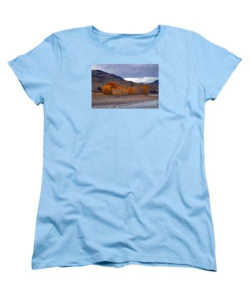 Blue And Yellow  Women's T-Shirt (Standard Cut) by Irina Hays