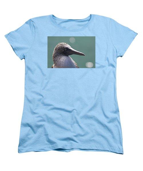 Blue Footed Booby II Women's T-Shirt (Standard Cut) by Dave Fleetham
