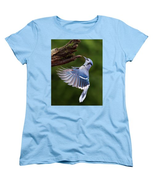 Women's T-Shirt (Standard Cut) featuring the photograph Blue Jay In Flight by Mircea Costina Photography