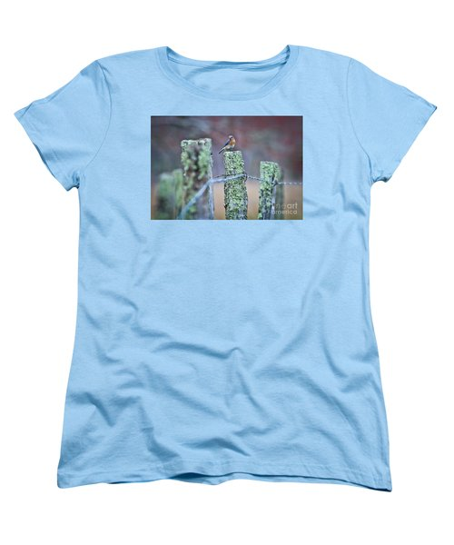 Bluebird 040517 Women's T-Shirt (Standard Cut) by Douglas Stucky