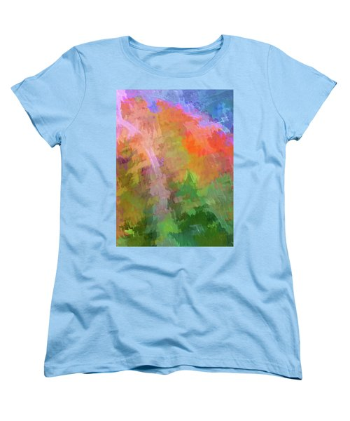 Blurry Painting Women's T-Shirt (Standard Cut) by Wendy McKennon