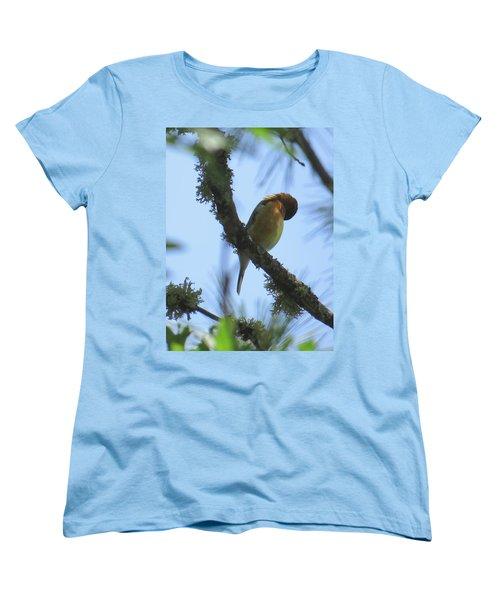 Bird Of Pray - Images From The Garden Women's T-Shirt (Standard Cut) by Brooks Garten Hauschild