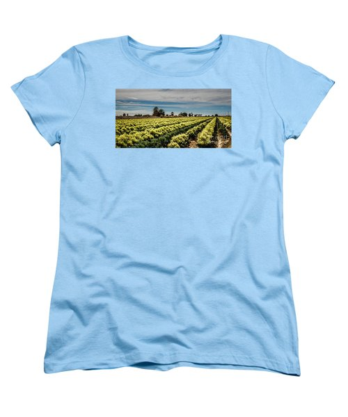 Broccoli Seed Women's T-Shirt (Standard Cut) by Robert Bales