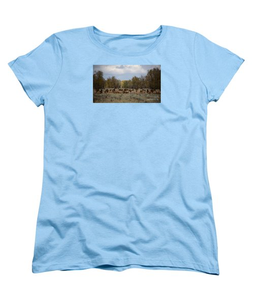 Women's T-Shirt (Standard Cut) featuring the photograph Bull Elk And Harem by Sandy Molinaro
