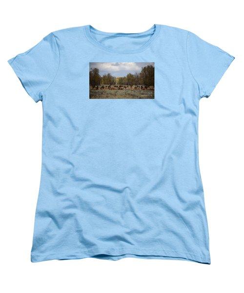 Bull Elk And Harem Women's T-Shirt (Standard Cut) by Sandy Molinaro