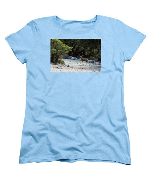 California Mule Deer Women's T-Shirt (Standard Cut) by Viktor Savchenko