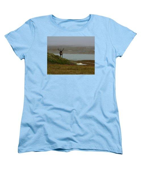 Caribou Fog Women's T-Shirt (Standard Cut) by Anthony Jones