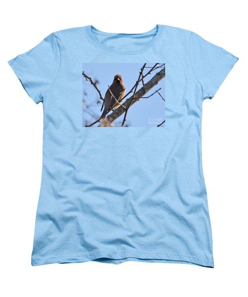 Cedar Wax Wing On The Lookout Women's T-Shirt (Standard Cut) by Barbara Dalton