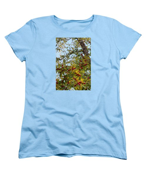Colorful Contrasts Women's T-Shirt (Standard Cut) by Deborah  Crew-Johnson
