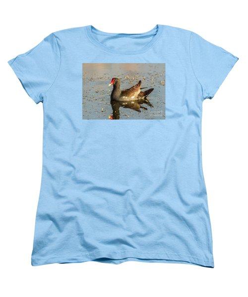 Common Gallinule Women's T-Shirt (Standard Cut) by Robert Frederick