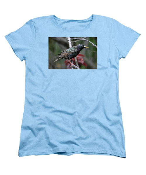 Common Starling Women's T-Shirt (Standard Cut) by Trina Ansel