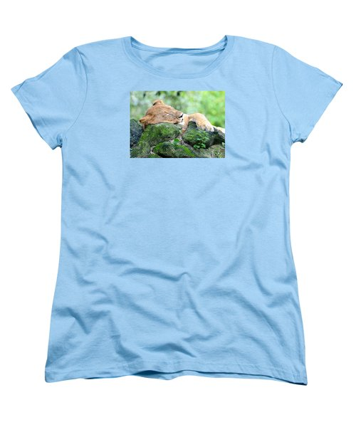 Contented Sleeping Lion Women's T-Shirt (Standard Cut) by Richard Bryce and Family