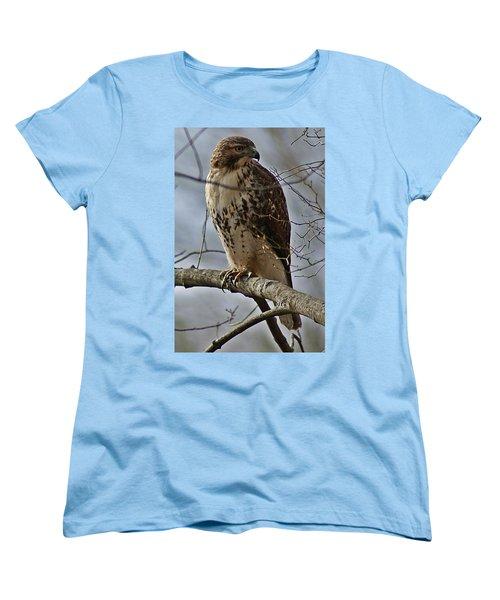 Cooper's Hawk 2 Women's T-Shirt (Standard Cut) by Joe Faherty