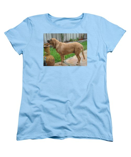 Cujo Getting A Scent Women's T-Shirt (Standard Cut) by Val Oconnor