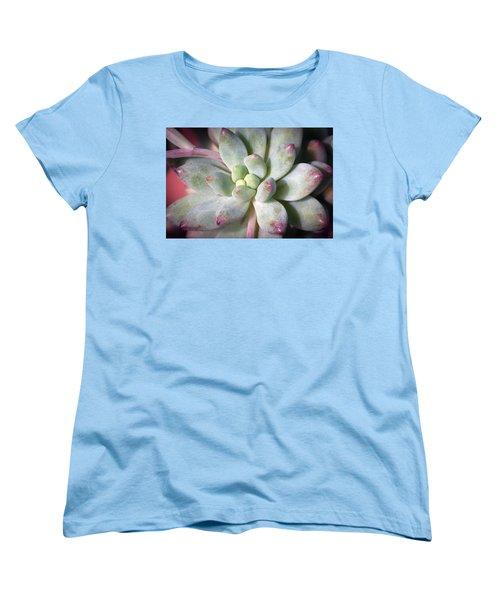 Women's T-Shirt (Standard Cut) featuring the photograph Cute Succulent Plant by Catherine Lau