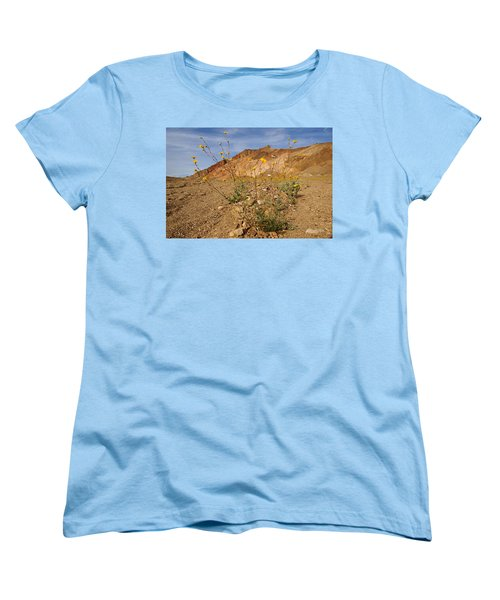 Death Valley Superbloom 202 Women's T-Shirt (Standard Cut)