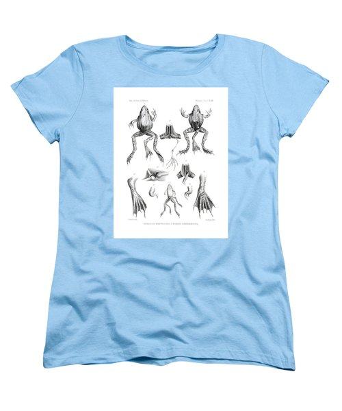 Women's T-Shirt (Standard Cut) featuring the drawing Deformed Frogs by Joseph Huet