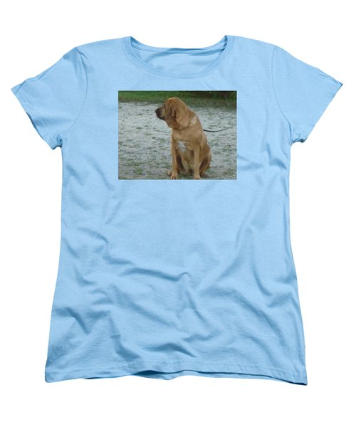 Did You Hear That? Women's T-Shirt (Standard Cut) by Val Oconnor