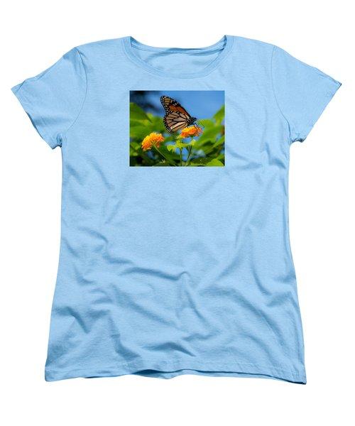 Dote Women's T-Shirt (Standard Cut) by Don Spenner